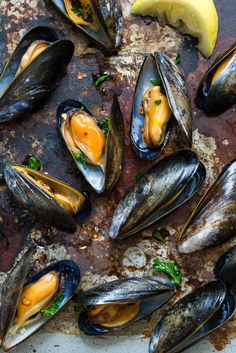 Seafood Pasta, Fish And Seafood, Great Recipes, Favorite Recipes, Dark Food Photography, Morning Breakfast, Mussels, Sea Food, Light Recipes