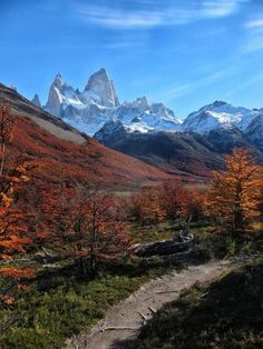 Hiking to Mt Fitzroy in Argentina - landscape, hiking, fitzroy, argentina. Patagonia, Photo Location, Nature Pictures, South America, Central America, Beautiful Places, Beautiful Scenery, Beautiful Landscapes, Cool Photos
