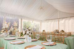 mint green and gold wedding   elegant-mint-green-gold-reception.jpg