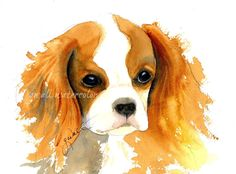 PRINT from my watercolor painting  Titled: Cavalier King Charles Spaniel  Image size: Approx. 5 x 7 in a 8 x 10 Single White Mat  Paper: Epson