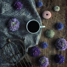 #9Vaga_Stillife9  #9vaga_shabbysoft9  #9Vaga_prpl9  #click_vision  #fabulous_shots  #theoutcreww  #versatile_photo_  #stilllifegallery  #jj_stillfood  #tv_stilllife  #stilllife_archive  #mystory_cups  #ir_lifetime  #loves_vintage  #vivovintage_world  #igw_vintage  #infinity_oldvintage  #ig_sanat  #sunday_sundries  #adoremycupofcoffee  #coffeeandseasons  #naughtyteas  #igcoffee  #jj_coffeebreak  #coffee_inst  #moka_lovers  #infinity_coffeebreak  #gezginkupa  #loves_coffeebreak…