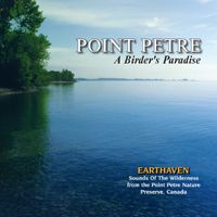 """Point Petre: A Birder's Paradise by Grant Mackay - Captures the day and nightitime bird sounds of the different environments of the """"birder's paradise"""" known as Point Petre. Home to over 337 species of land and aquatic birds. NATURE SOUNDS ONLY - NO MUSIC."""