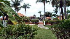 travelizard.com Aruba Beach Club, Dolores Park, Travel, Viajes, Destinations, Traveling, Trips