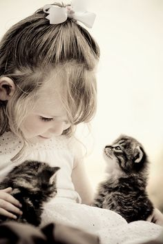 Precious! Look how that kitty on the right is studying her. Kindness. Teach it to your children! :)