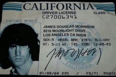 Jim Morrison's DL