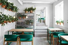 Vino Veritas Oslo by Masquespacio.  Love that green!