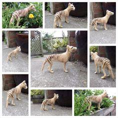 Neelde felted Thylacine. Tasmanian Tiger