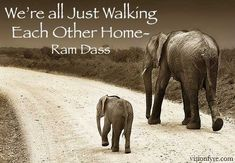 We're All Just Walking Each Other Home - Ram Dass - Vision Fyre