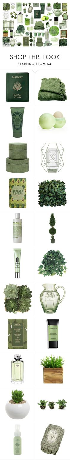 """green fillers"" by juliehalloran ❤ liked on Polyvore featuring Royce Leather, Woven Workz, Sisley, Eos, Pigeon & Poodle, Bloomingville, Greensmart Decor, Butter London, (MALIN+GOETZ) and Nearly Natural"