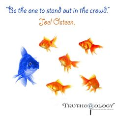 Stand Out! #JoelOsteen #StandOut #BeDifferent #Different #Unique #Special #Distinctive #Quotes #Truth #Search #Truthopology