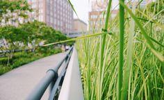 High Line in Manhattan, New York City