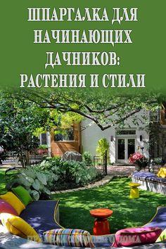 Crib for beginner summer residents: Plants and styles- Шпаргалка для начинающих дачников: Растения и стили # ideas # cottages # stylish -
