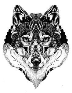 Wildlife Creatures by Iain Macarthur