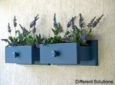 Use drawers as wall planters