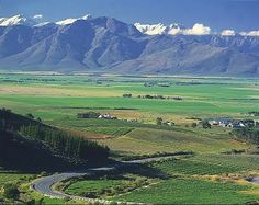 Riebeek Wes south africa - Google Search