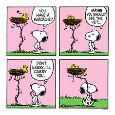 Snoopy takes Woodstock to the Vet.