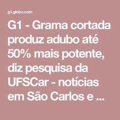 G1 - Grama cortada produz adubo até 50% mais potente, diz pesquisa da UFSCar - notícias em São Carlos e Região