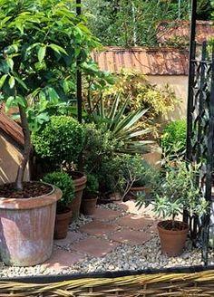 Terracotta slab path and pots in mediterranean courtyard garden