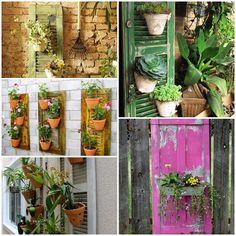 Jardim criativo em casa