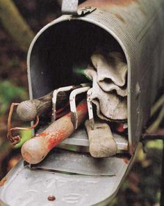 old mailbox used to store small gardening tools