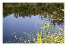 Rio Cávado / Cávado River [2013 - Verim - Portugal ] #fotografia #fotografias #photography #foto #fotos #photo #photos #local #locais #locals #paisagem #paisaje #landscape #paisagens #paisajes #landscapes #city #cities #europa #europe #natureza #naturaleza #nature #rios #rivers @Visit Portugal @ePortugal