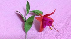 How to Make Fuchsia Crepe Paper flowers - Flower Making of Crepe Paper -...