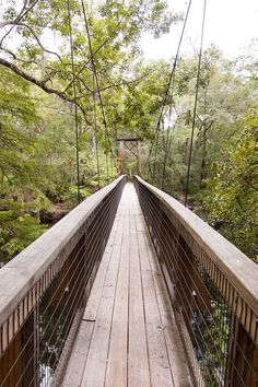 O'Leno State Park is one of Florida's oldest state parks situated along the Sante Fe River offering activities like camping, hiking, and fishing. #flstateparks | ERINWIGGLE.COM