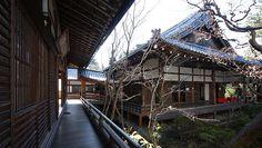 Kyoto Travel: Eikando Temple