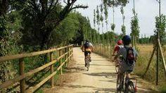 Cicloturismo: Vias verdes de Palafrugell