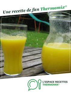 Smoothies Thermomix, Jus D'orange, Hurricane Glass, Cocktails, Pudding, Cooking, Tableware, Desserts, Recipes