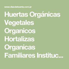 Huertas Orgánicas Vegetales Organicos Hortalizas Organicas Familiares Institucionales hortalizas organicas caracteristicas aporte vitaminico vitaminas minerales cosecha hortalizas