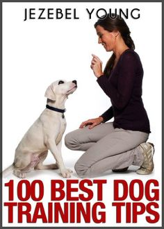 100 Dog Training Tips - http://www.thepuppy.org/100-dog-training-tips/
