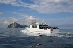 Capri Swim and Fun Half-day Boat Tour from Sorrento An escape to the most beautiful island of the bay: we will take you to discover the hidden wonders of the island of Capri.Meeting is at Marina Piccola in Sorrento at 10:30 am and departure to Capri at 11:20 pm. Cruise around the island of Capri with two stops for swimming and snorkelling.Here is a list of the most important spots that you will visit:Marina Grande , The statue of the Scugnizzo ,The Grotta del Corallo, The Grot...