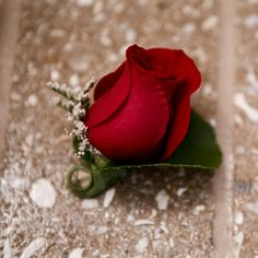 Small, simple red boutonniere for groomsmen