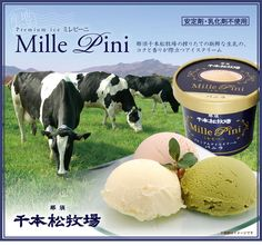 那須千本松牧場 プレミアムアイスクリーム《ミレピーニ》8個セット【送料無料】 ニッポンの恵