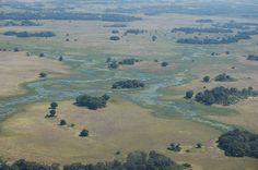 Delta del #Okavango   #BOTSWANA #destinos #viajes #Africa www.ssvuv.com