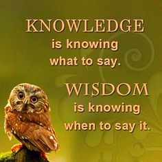 Gather knowledge to gain wisdom.. #wisdom #knowledge #education