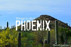 Phoenix sits within the Sonoran Desert, the hottest desert in North American but also the wettest based on its annual rainfall. The combo creates