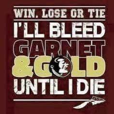 I'll bleed Garnet and Gold until I die Florida State Football, College Football Teams, Florida State University, Florida State Seminoles, Football Stuff, Sports Teams, School Logo, I School, Cubs Team