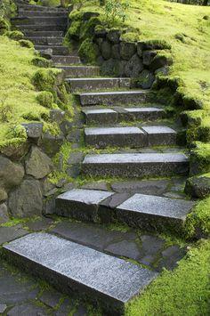 Up the Steps,Japanese Gardens of Potland Oregon