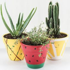 Here are some of the most unique yet 66 DIY Colorful Fruit Crafts - Inspired Fun Projects easy ideas for making fruity crafts this summer. First we have a diy tuitty fruity cap idea here for you which is simple and creative. Painted Plant Pots, Painted Flower Pots, Pots D'argile, Clay Pots, Colorful Fruit, Colorful Flowers, Fun Fruit, Fruit Crafts, Cactus Y Suculentas