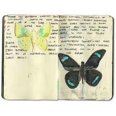 Amazon Jungle Moleskine Journal ❤ liked on Polyvore featuring fillers, books, backgrounds, notebooks, extras, doodle and scribble