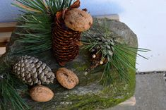 My Home Style: 10 tipů na podzimní tvoření pro nejmenší Coconut, Fruit, Food, Essen, Meals, Yemek, Eten