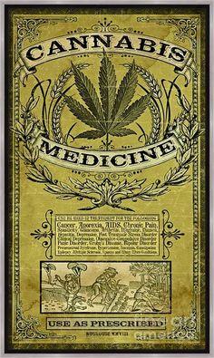 Cannabis, Vintage Labels, Vintage Ads, Vintage Prints, Typographie Fonts, Image Deco, Rock Poster, Canvas Art, Canvas Prints
