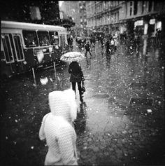 Last Snowfall | Flickr - Photo Sharing!