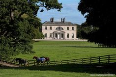 Mount Kennedy House, Newtownmountkennedy, Co. Wicklow MyHome.ie Residential
