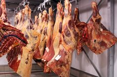 Pics For > Cow Slaughterhouse