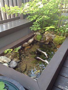 Patio Pond, Ponds Backyard, Backyard Landscaping, Diy Pond, Ponds For Small Gardens, Fish Pond Gardens, Bog Garden, Dream Garden, Outdoor Fish Ponds