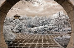 Window to my Dreams. By Dudski. Photo is taken with an IR-converted D50 in the chinese botanical gardens in Montreal