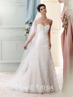 David Tutera - Delia - 215271 - All Dressed Up, Bridal Gown